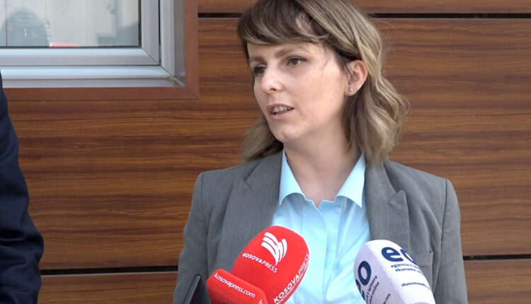Shala and Mehmeti discuss coordinating activities to prevent domestic violence