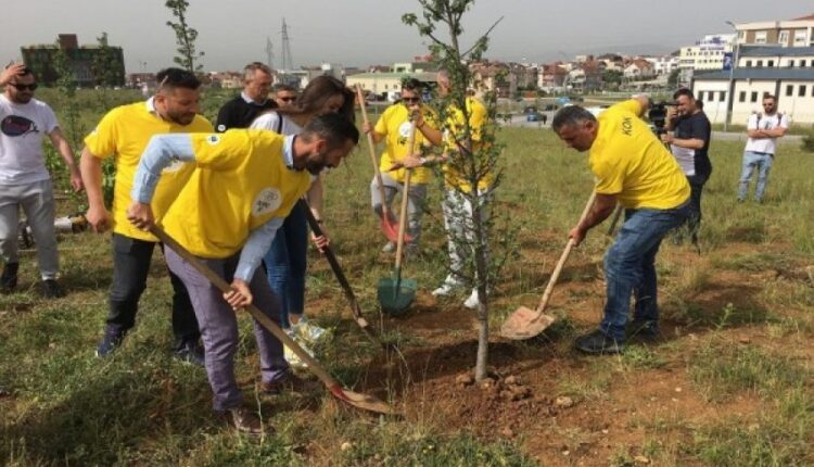 The Olympic Week continues with the planting of trees in