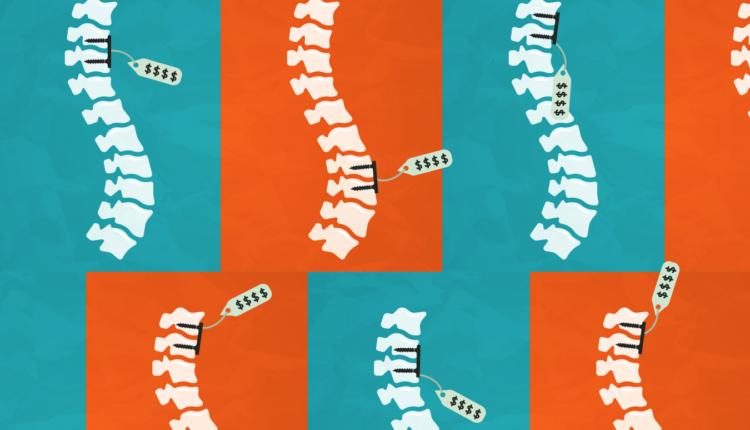 spine-illustration.png